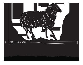 Black Sheep Post & Beam